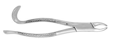 Extracting Forceps #24